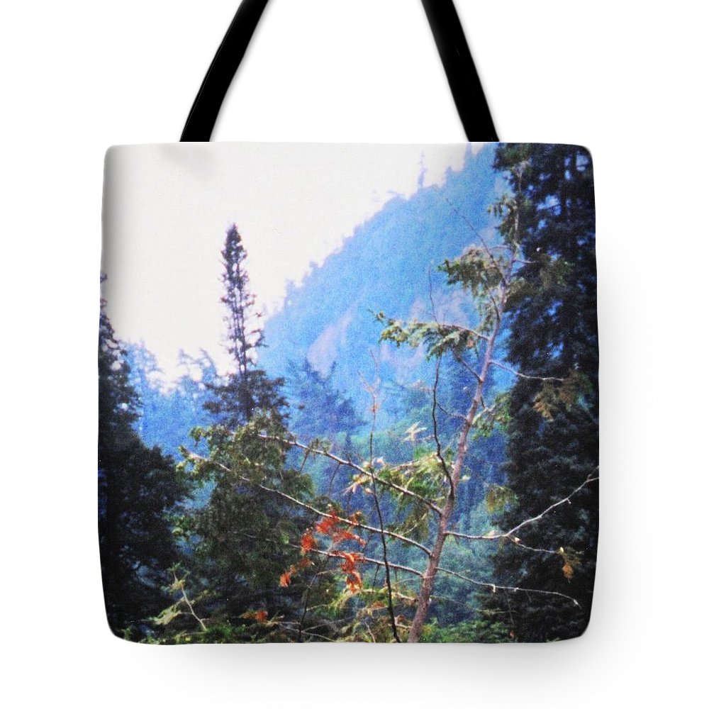 Agawa Tote Bag featuring the photograph Agawa Canyon by Ian MacDonald