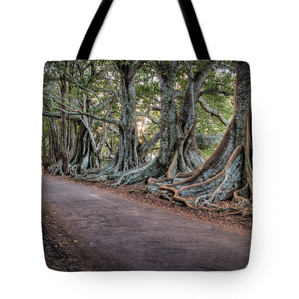 Fence Tote Bag featuring the photograph Ageless Norfolk by Brad Grove