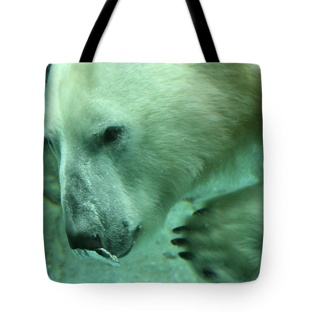 Polar Bear Tote Bag featuring the photograph Air Bubble by Douglas Barnard