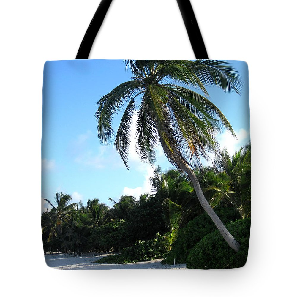 Beach Tote Bag featuring the photograph Akumal Sur Beach 01 by Christopher Spicer