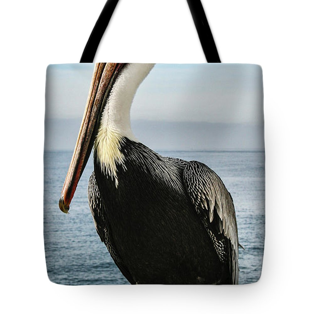 Pelican Tote Bag featuring the photograph Alan The Pretty Pelican by Sally Bauer