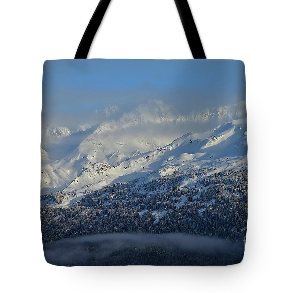 Mountain Tote Bag featuring the photograph Alaska Mountain View by Rick Monyahan