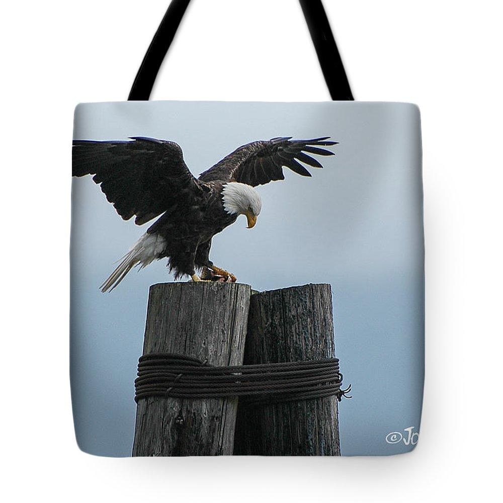 Seward Tote Bag featuring the photograph Alaskan Bald Eagle by Joan Wallner