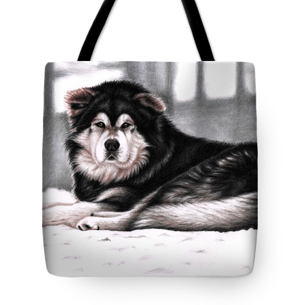 Dog Tote Bag featuring the drawing Alaskan Malamute by Nicole Zeug