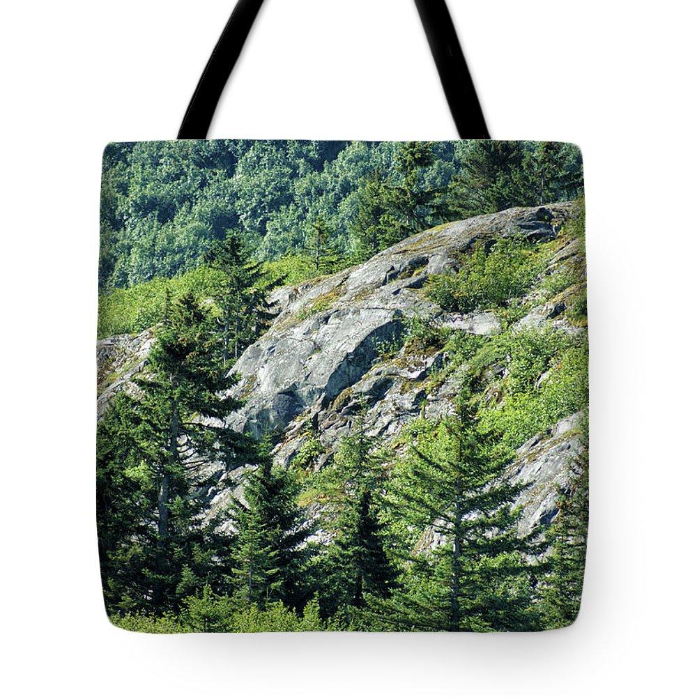Alaska Tote Bag featuring the photograph Alaskan Wilderness by Maria Keady
