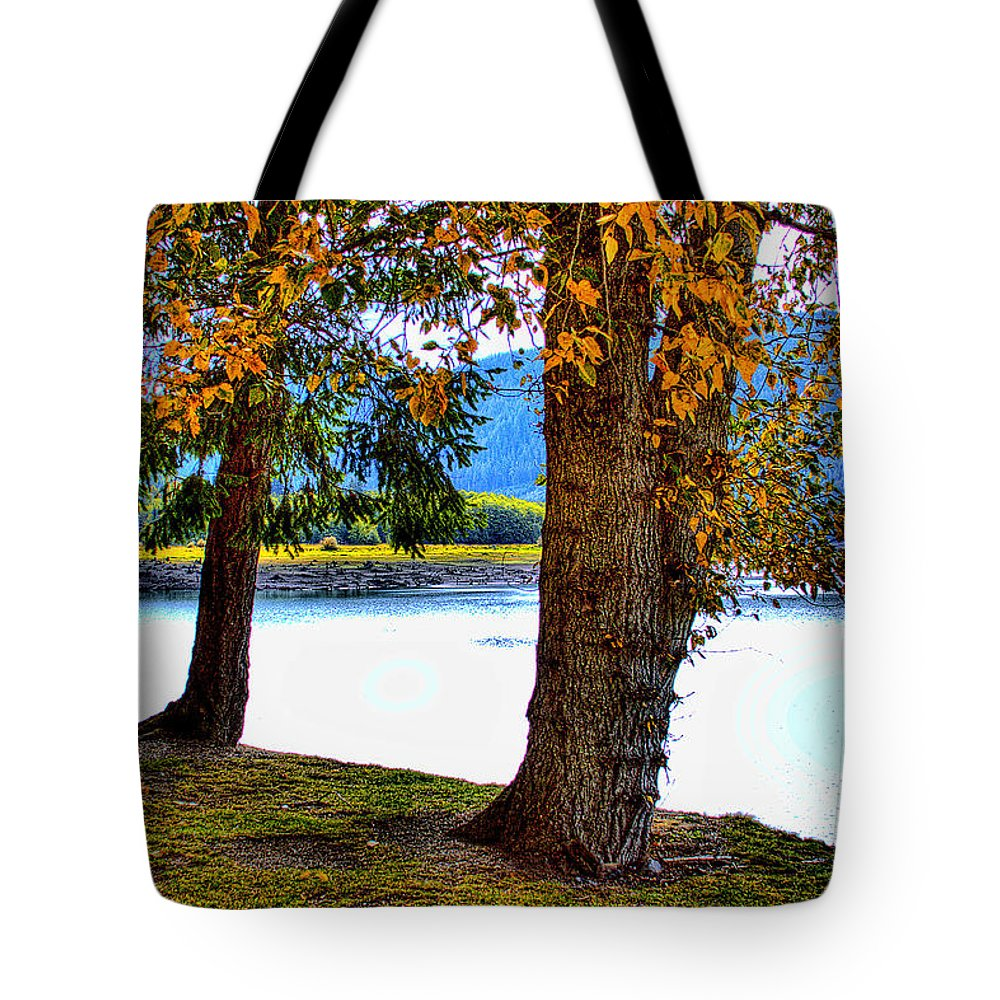 Lake Tote Bag featuring the photograph Alder Lake In The Fall by David Patterson