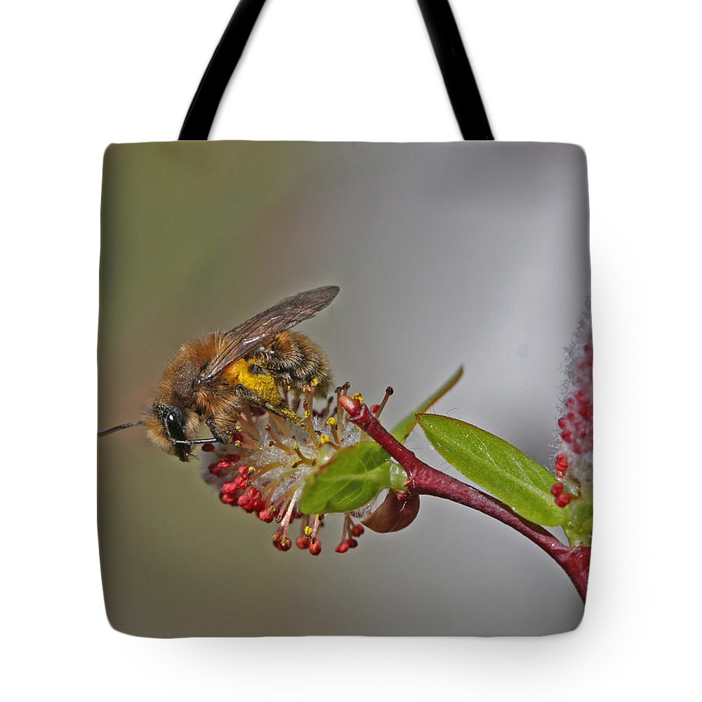 Alfalfa Bee Tote Bag featuring the photograph Alfalfa Bee by Gary Wing