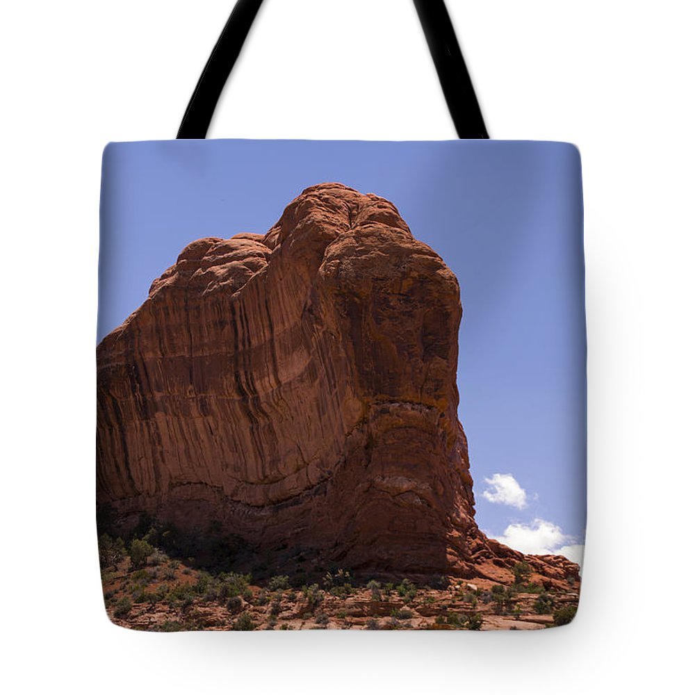Rock Tote Bag featuring the photograph Alien by Louise Magno