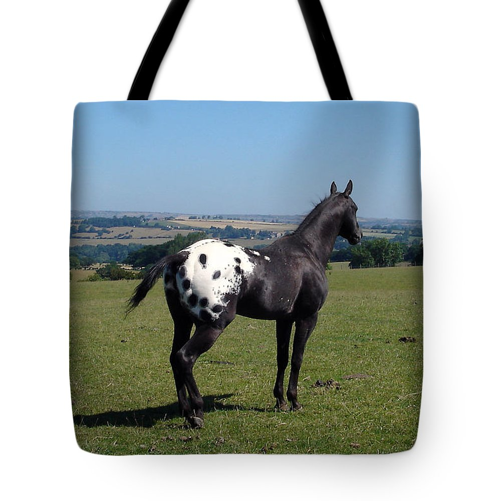 Horses Tote Bag featuring the photograph All He Surveys by Susan Baker