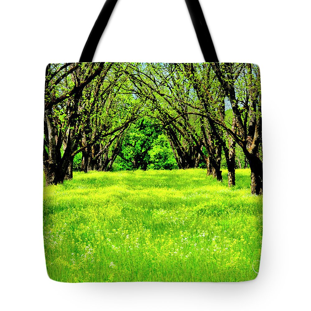 Landscape Tote Bag featuring the photograph All In A Row by Alfie Wace
