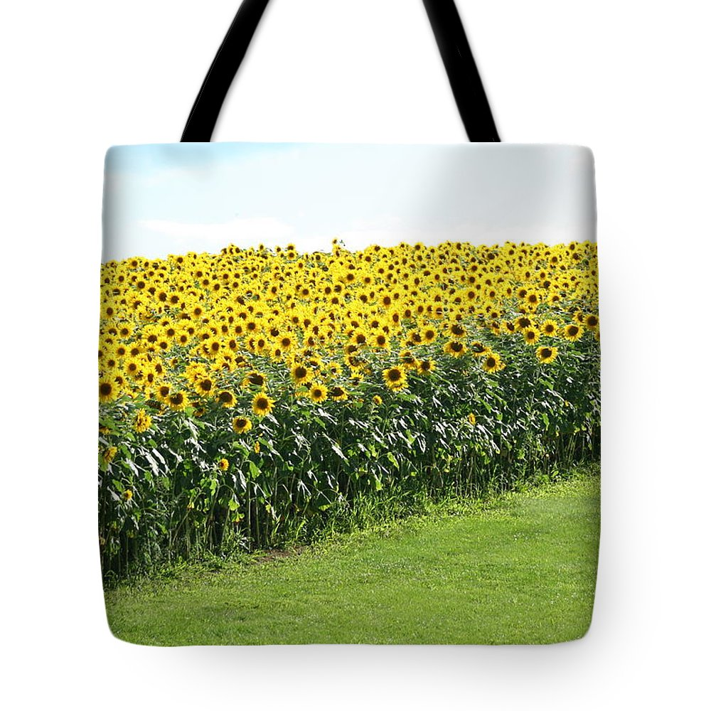 Line Tote Bag featuring the photograph All Lined Up by Tammy Finnegan