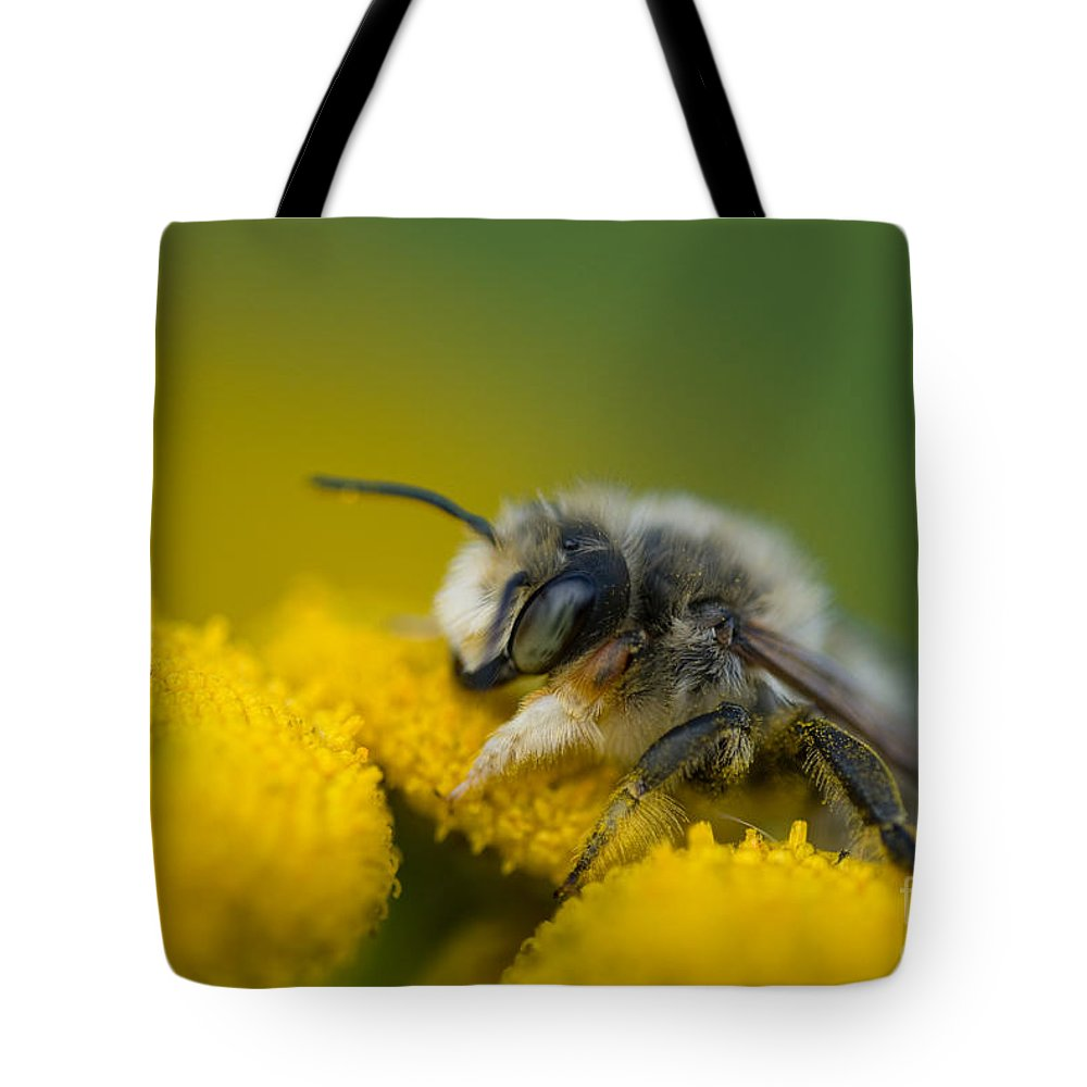 Flower Tote Bag featuring the photograph All Mine by Venetta Archer