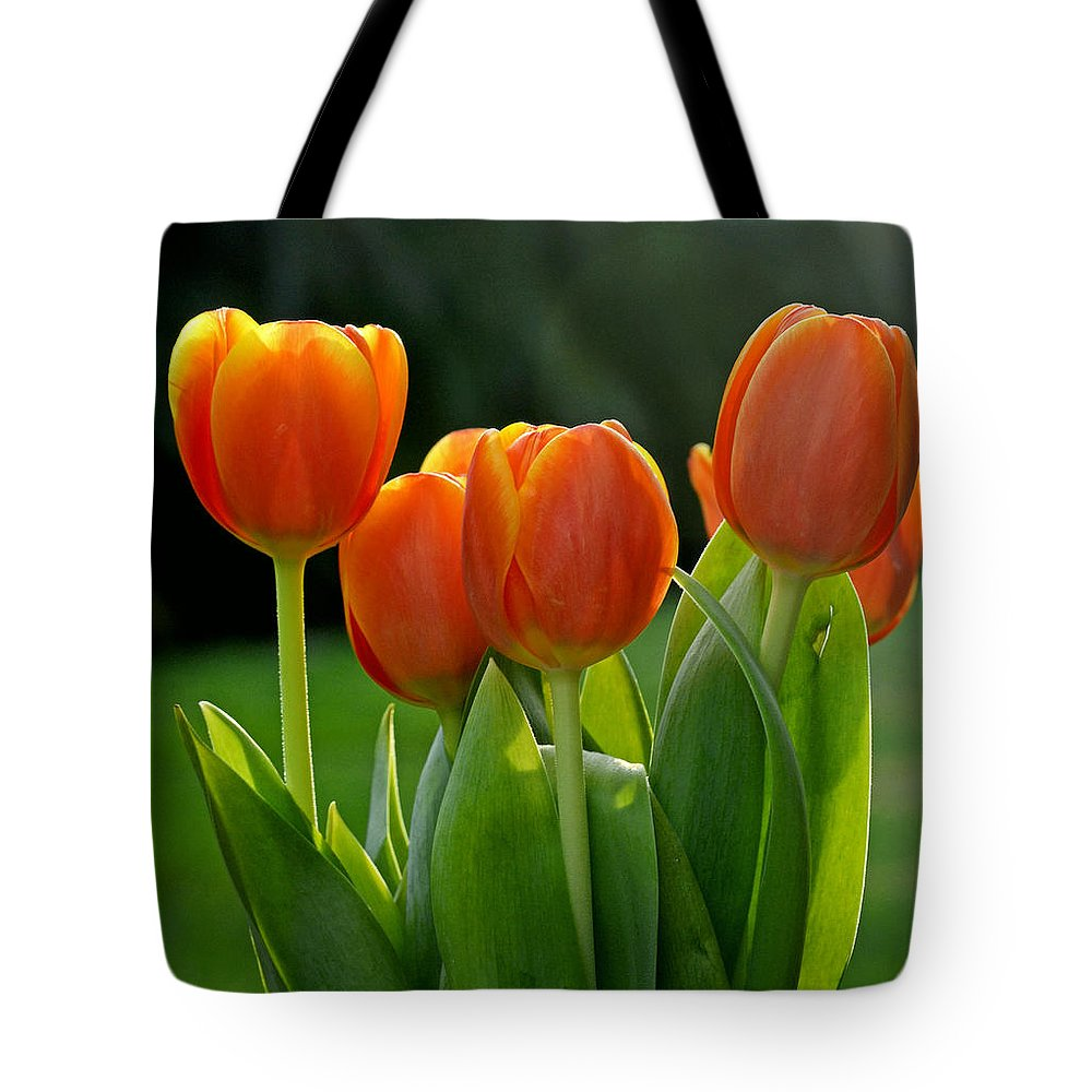 Tulip Tote Bag featuring the photograph All Together by Melanie Moraga