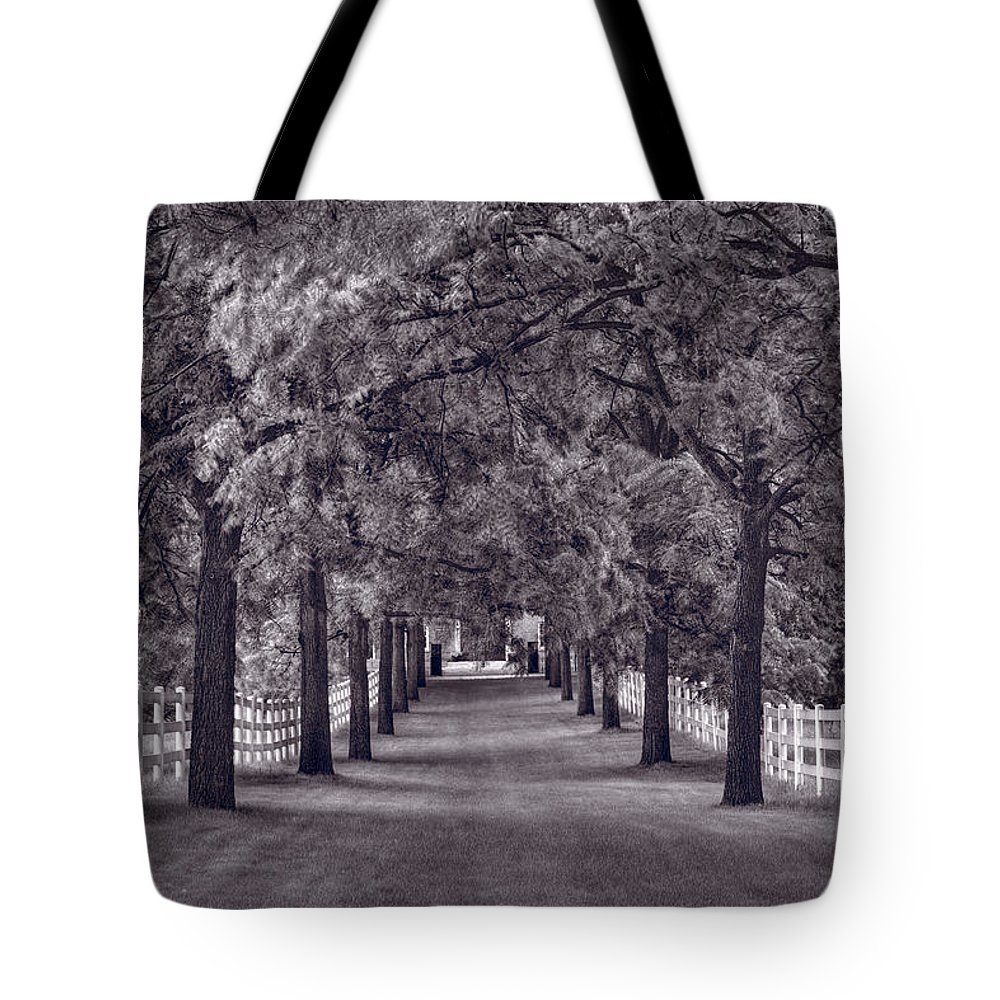 Allee Tote Bag featuring the photograph Allee Way Bw by Steve Gadomski