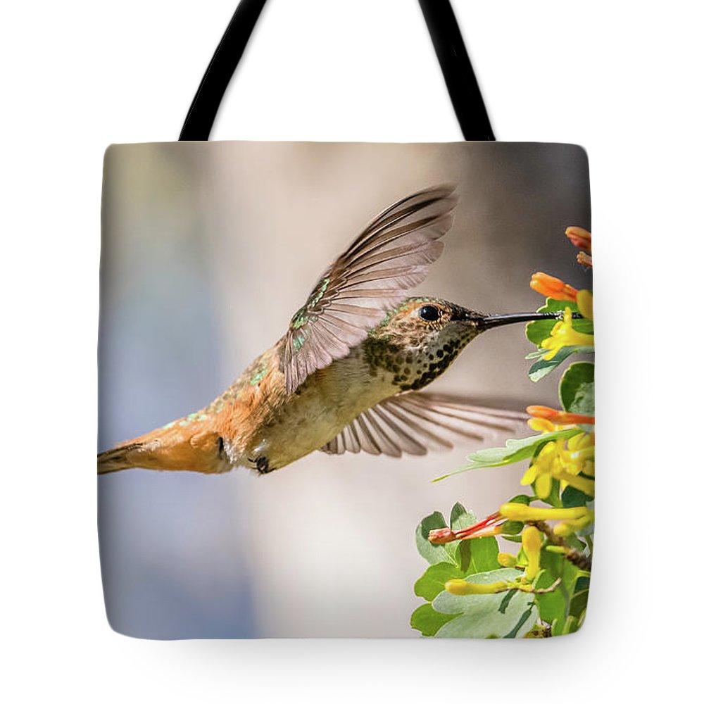 Allen's Hummingbird On Golden Currant Tote Bag featuring the photograph Allen's Hummingbird On Golden Currant by Morris Finkelstein