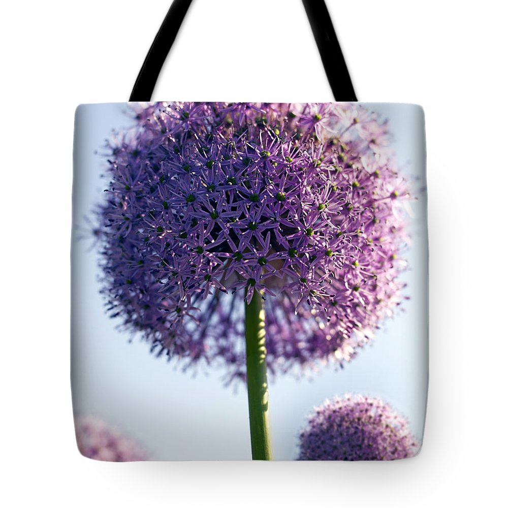 Allium Tote Bag featuring the photograph Allium Flower by Tony Cordoza