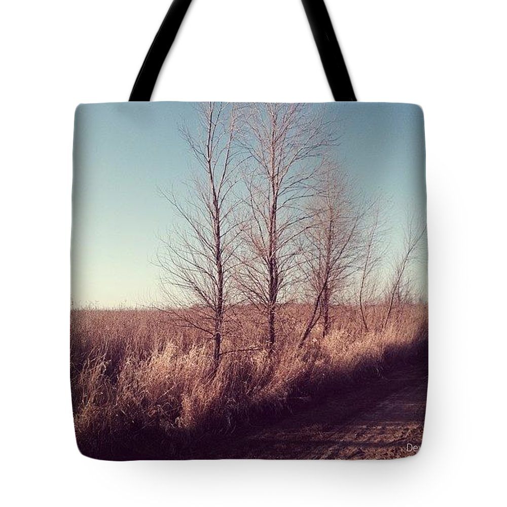 Three Tote Bag featuring the photograph Alone by Devin Dixon