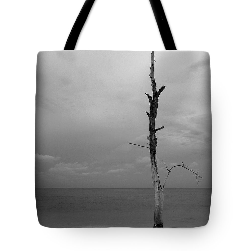 Photo For Sale Tote Bag featuring the photograph Alone On The Beach by Robert Wilder Jr