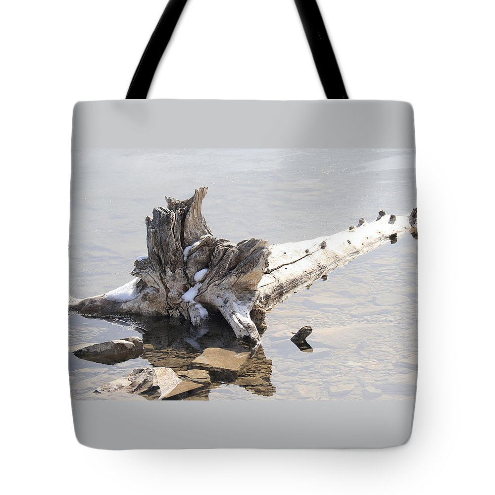 Tree Tote Bag featuring the photograph Alone by Tiffany Vest