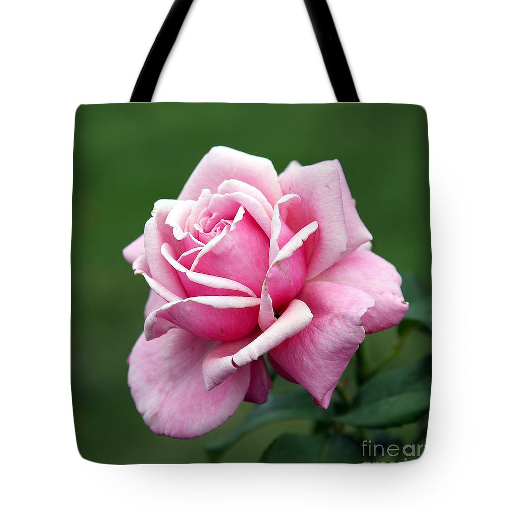 Rose Tote Bag featuring the photograph Alone Time by Amanda Barcon