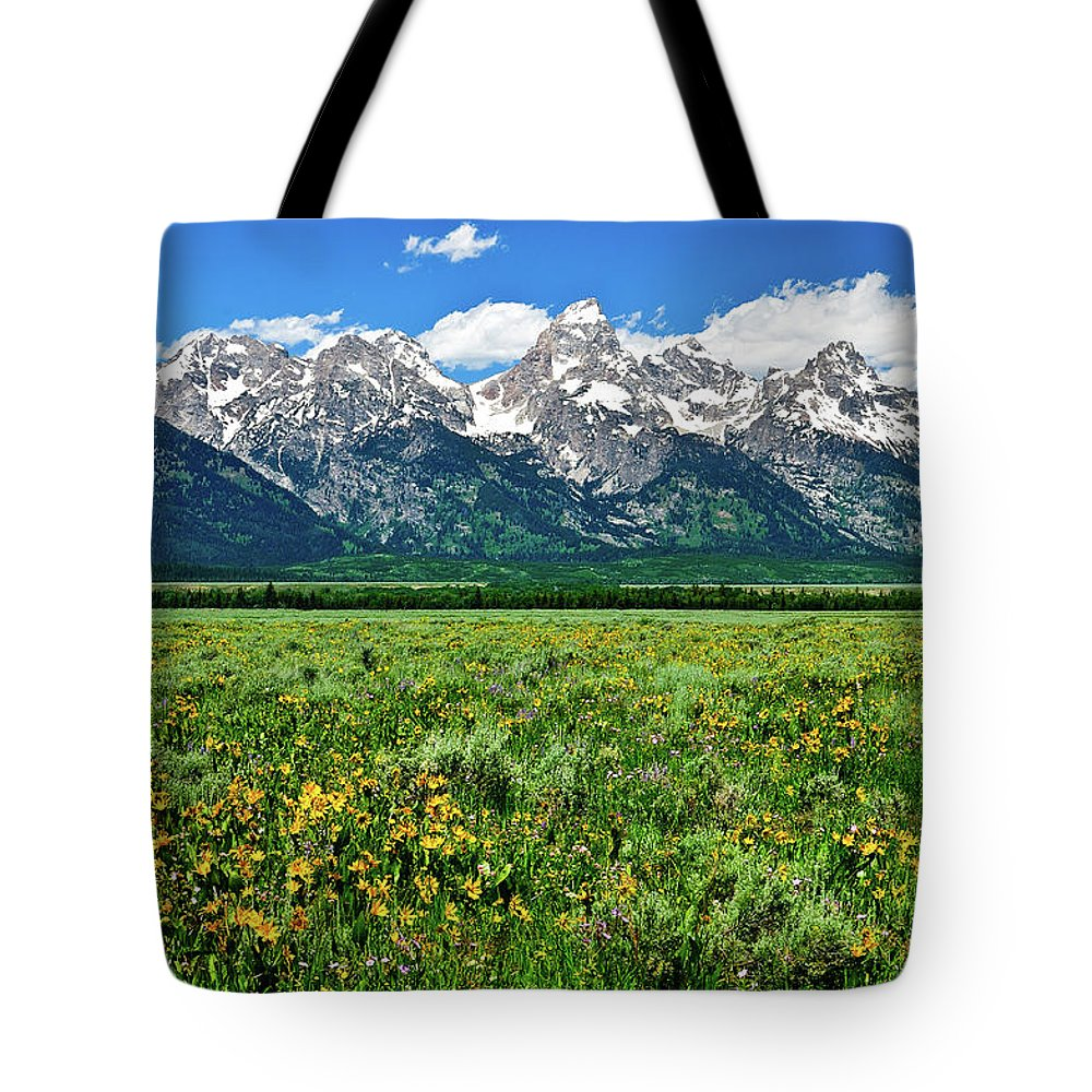 Grand Teton National Park Tote Bag featuring the photograph Alpine Spring by Greg Norrell