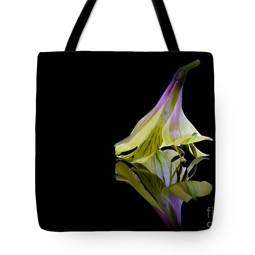 Alstroemeria Tote Bag featuring the photograph Alstroemeria Blossom by Stela Knezevic