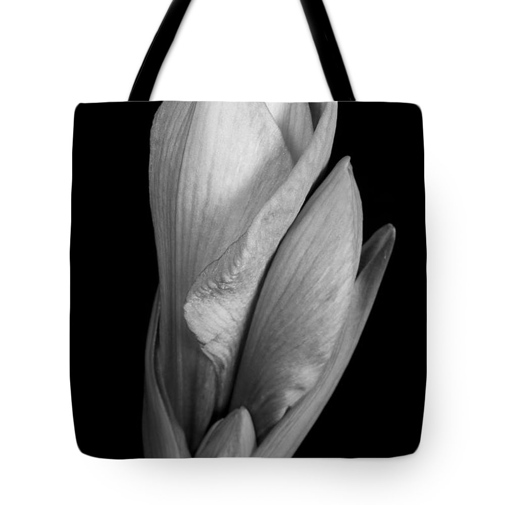 Amaryllis Tote Bag featuring the photograph Amaryllis In Black And White by James BO Insogna