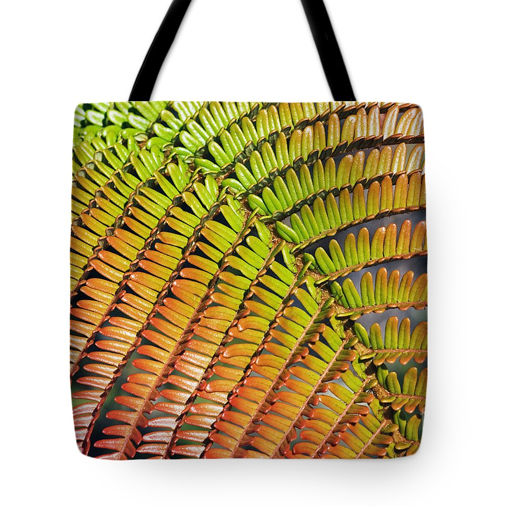 Abstract Tote Bag featuring the photograph Amaumau Fern Frond by Greg Vaughn - Printscapes