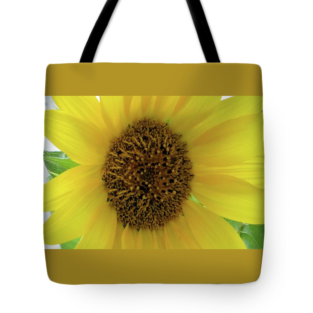 Flowers Tote Bag featuring the photograph Unique Sunflower by Angelcia Wright