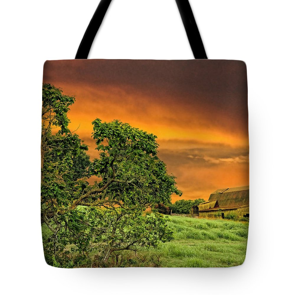 Landscapes Tote Bag featuring the photograph Amber Skies by Jan Amiss Photography