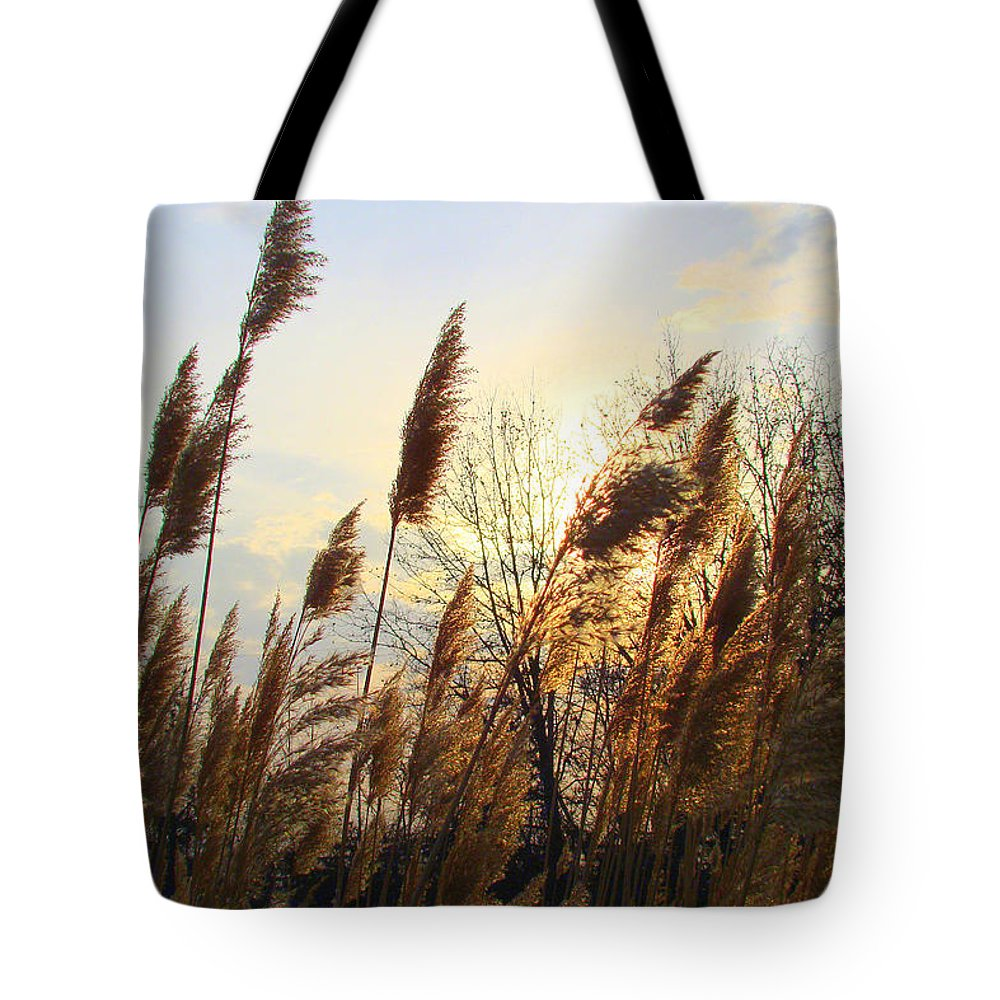 Pampasgrass Tote Bag featuring the photograph Amber Waves Of Pampas Grass by J R Seymour