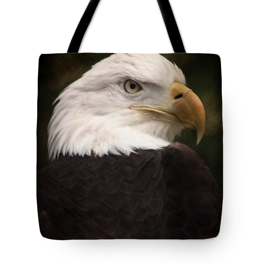 Bald Eagle Tote Bag featuring the photograph American Bald Eagle by Joseph G Holland