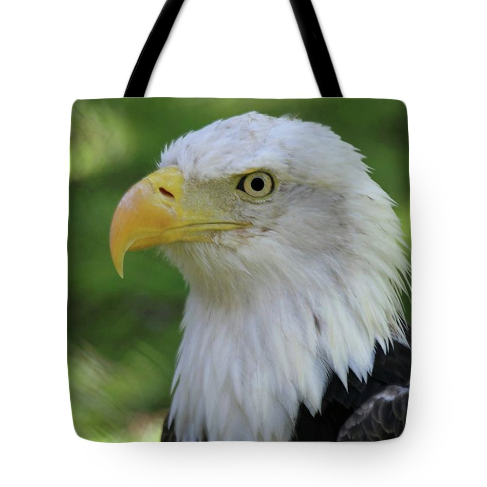 Eagle Tote Bag featuring the photograph American Bald Eagle by Sabrina L Ryan
