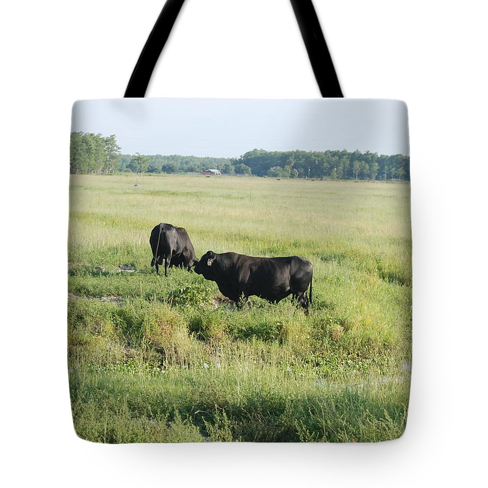 Cows Tote Bag featuring the photograph American Cattle by Rob Hans
