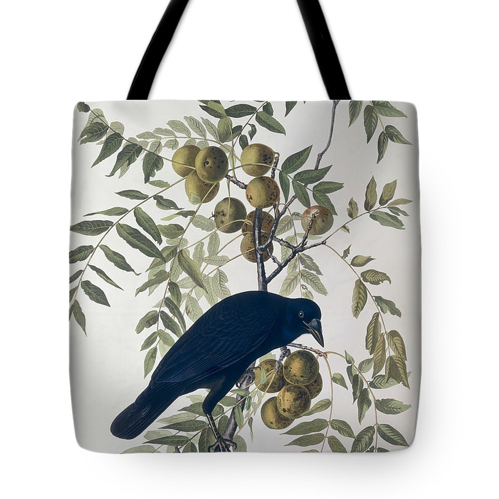 American Crow Tote Bag featuring the drawing American Crow by John James Audubon