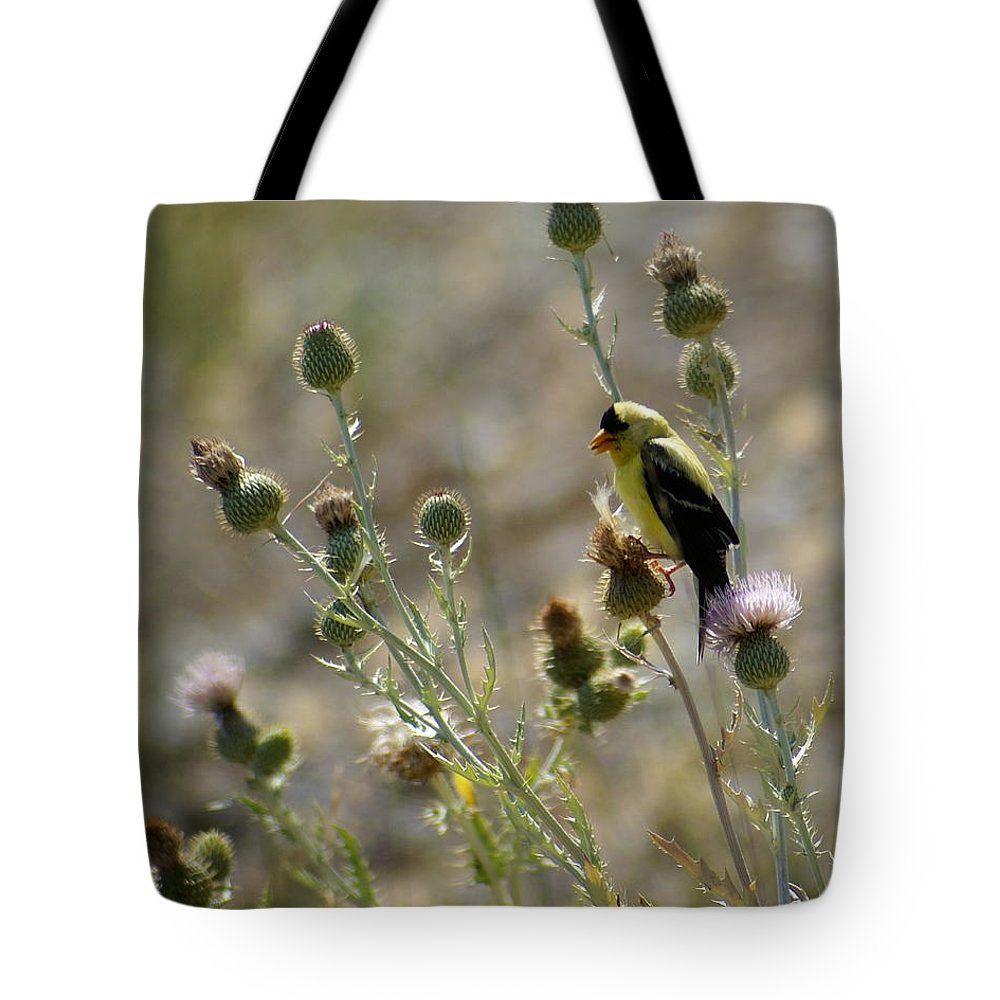 Birds Tote Bag featuring the photograph American Goldfinch Having Lunch On Bakery Hill 2 by Ben Upham III