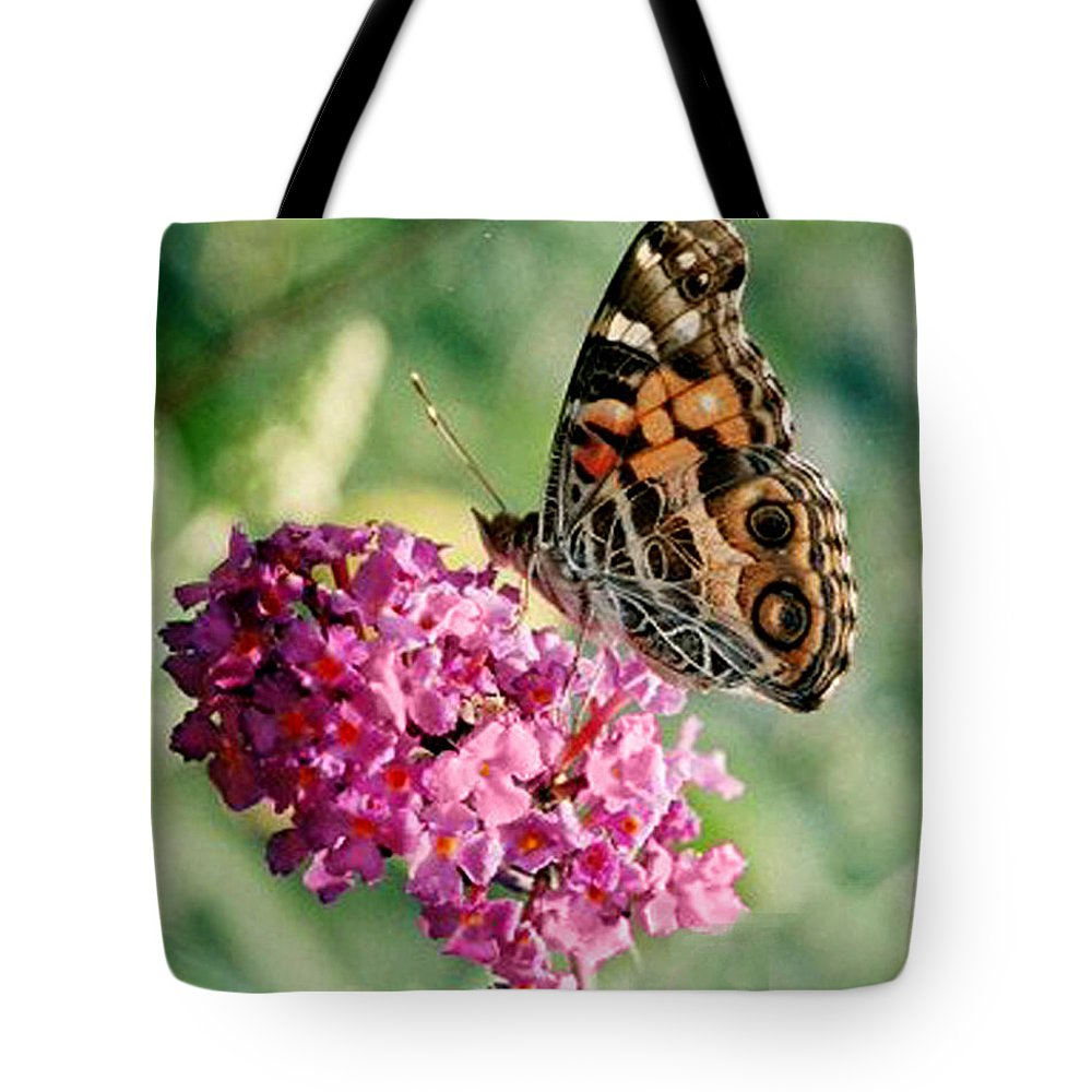 Butterfly Tote Bag featuring the photograph American Painted Lady by Donna Brown