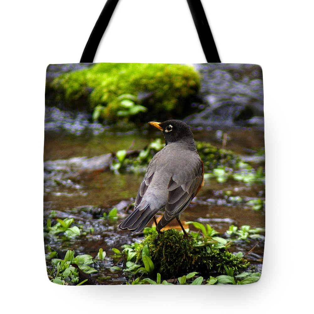 Birds Tote Bag featuring the photograph American Robin In Garden Springs Creek by Ben Upham III