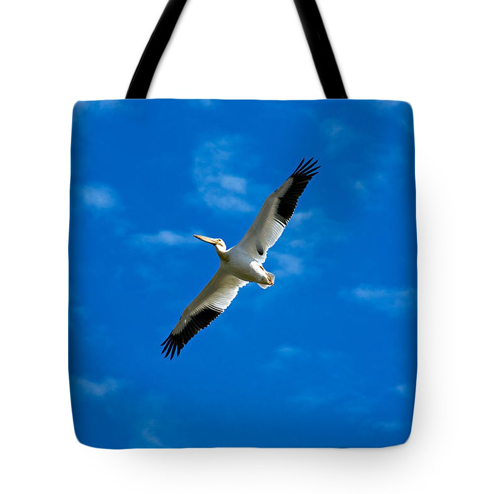 American Tote Bag featuring the photograph American White Pelican by Marilyn Hunt