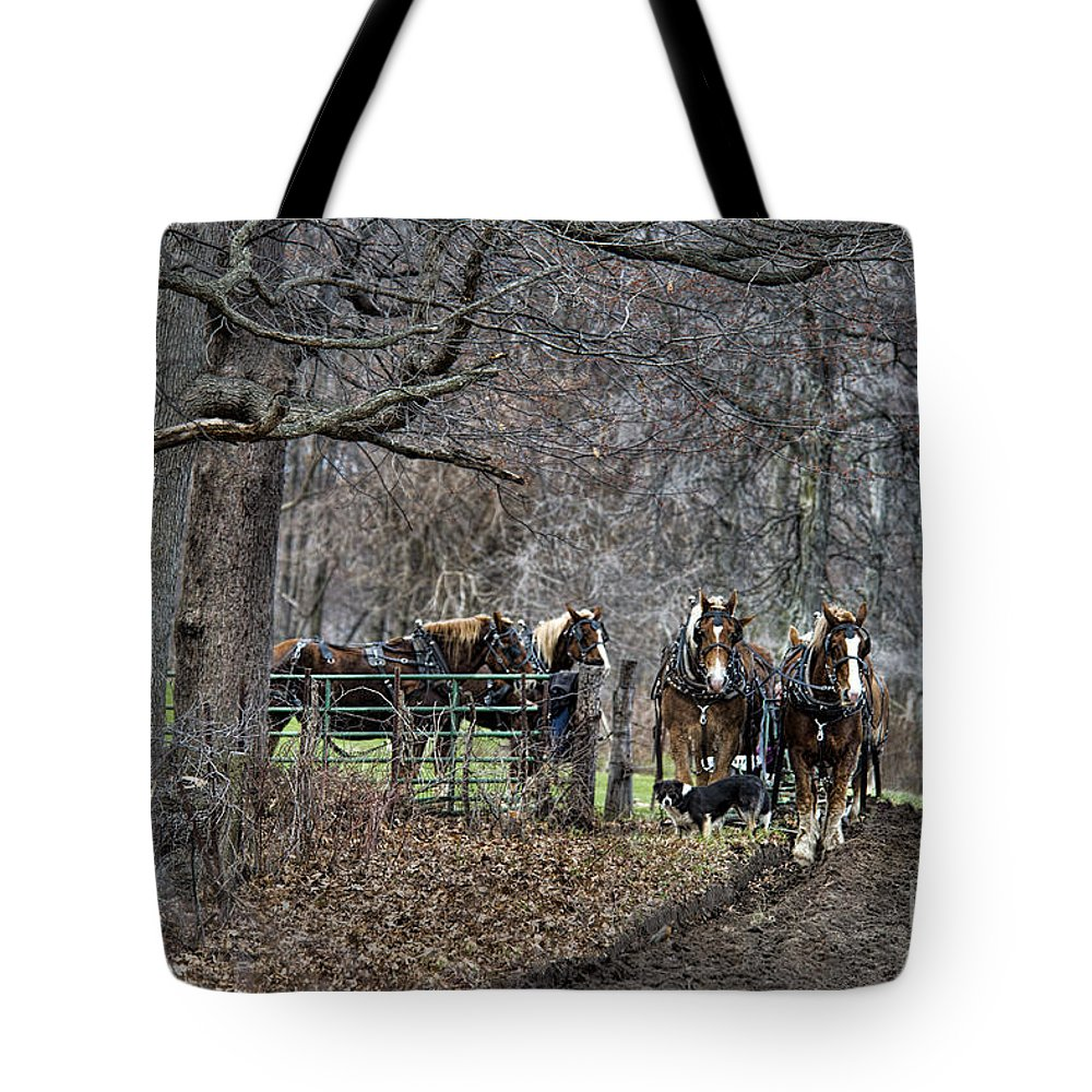 Amish Tote Bag featuring the photograph Amish Horses In Harness by David Arment