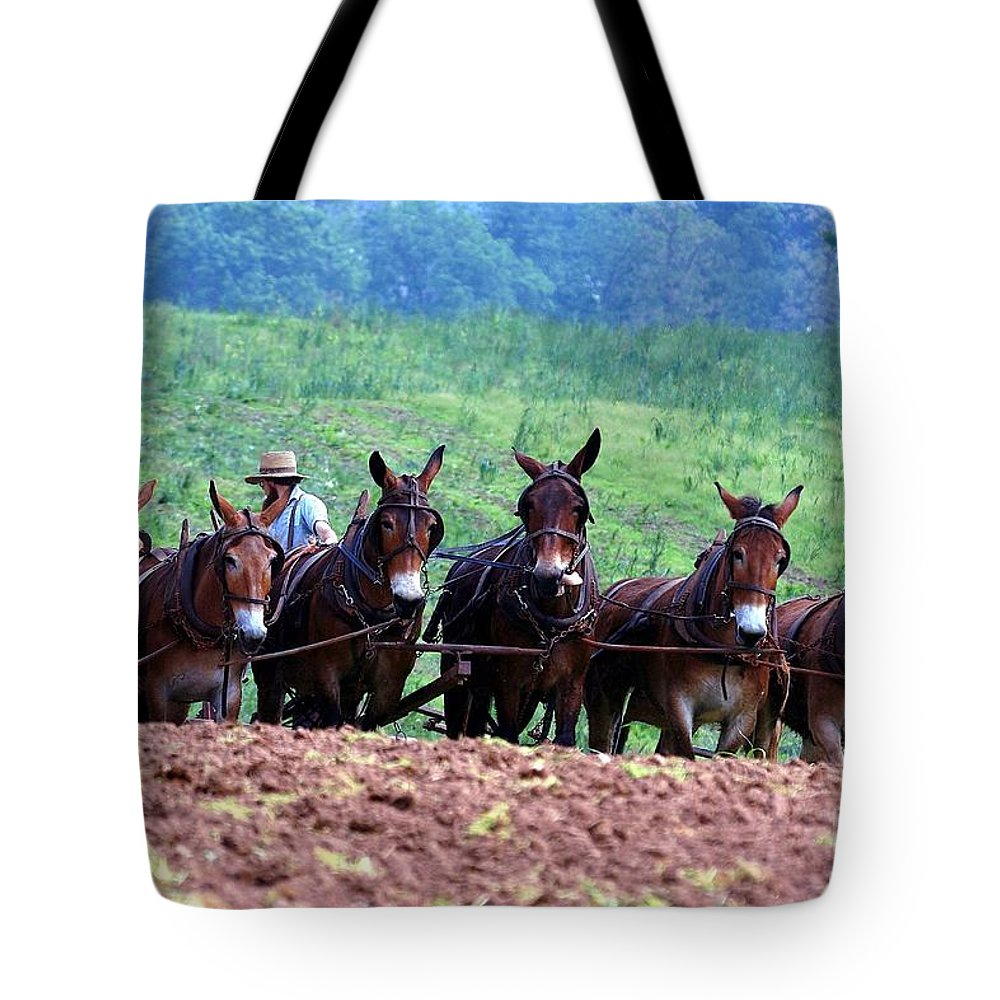 Amish Tote Bag featuring the photograph Amish Plowing The Fields With Mules by Randy Matthews