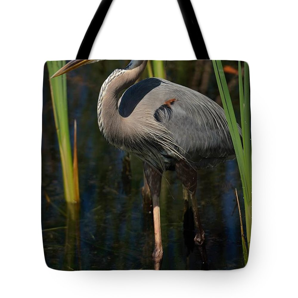 Heron Tote Bag featuring the photograph Among The Reeds by Pamela Blizzard