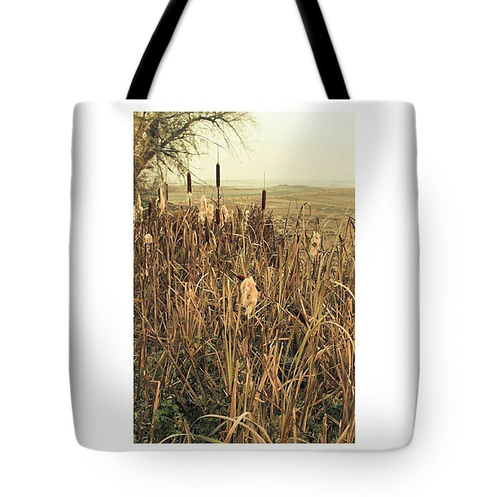 Stausee Tote Bag featuring the photograph *among The Reeds  #landscape by Mandy Tabatt