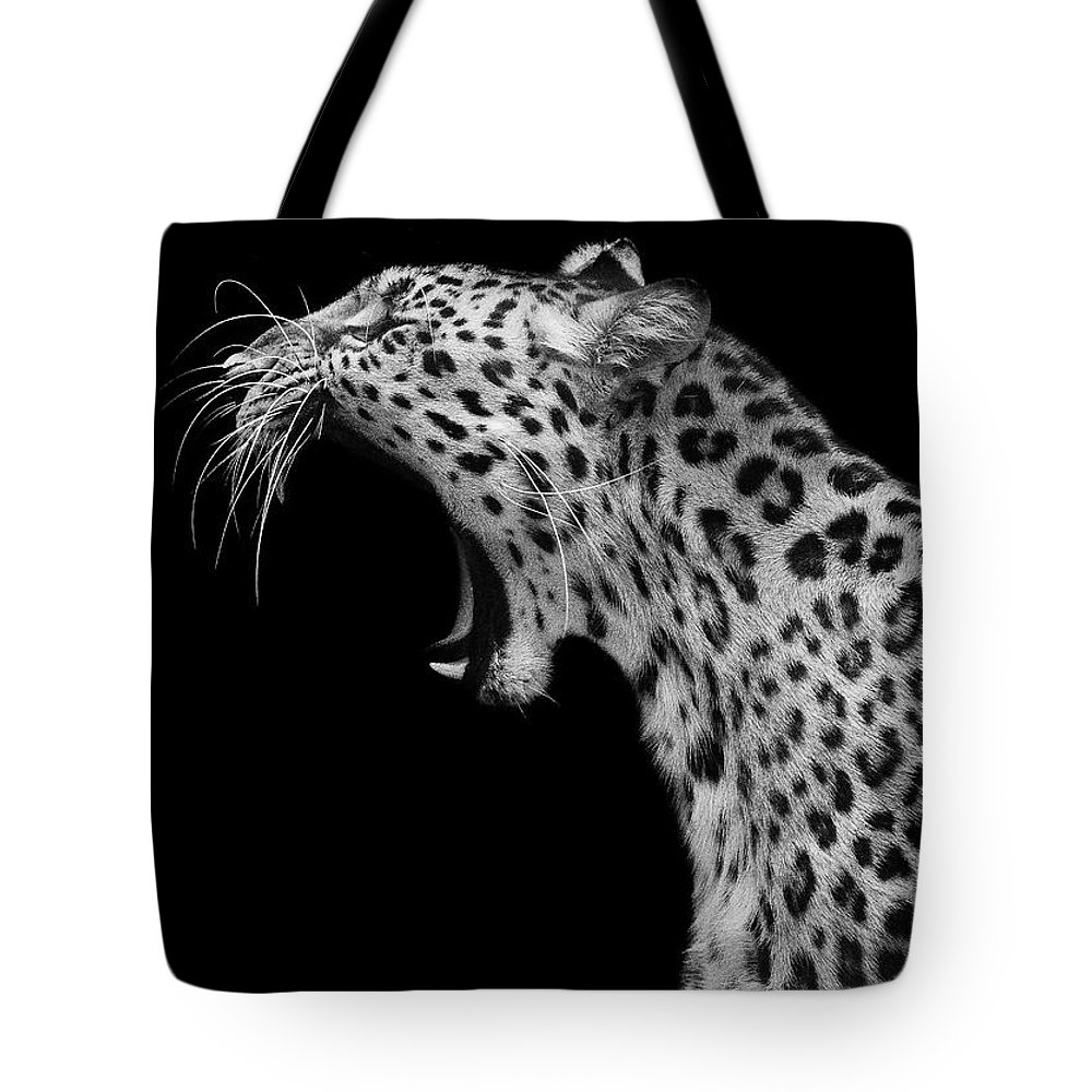 Amur Leopard Tote Bag featuring the photograph Amur Leopard by David Williams