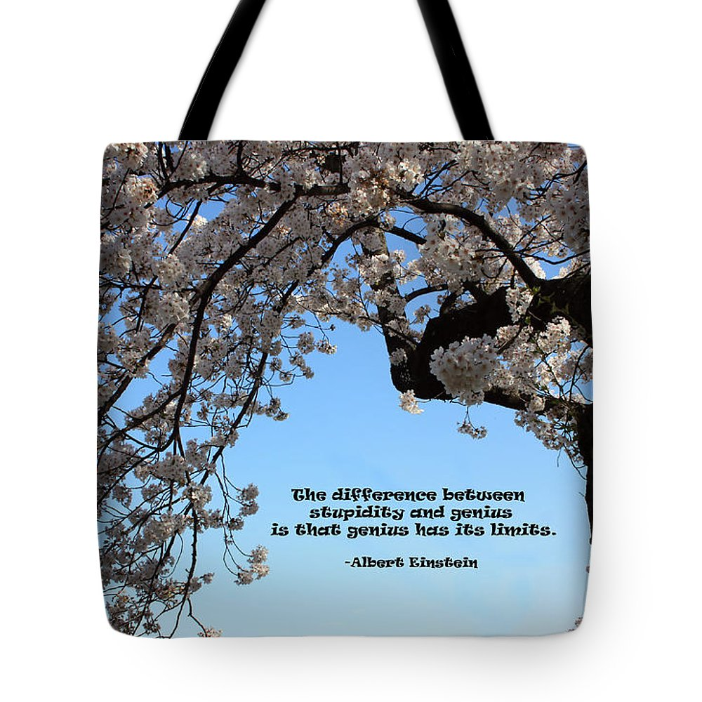 Trees Tote Bag featuring the photograph An Einstein Moment by Mary Haber