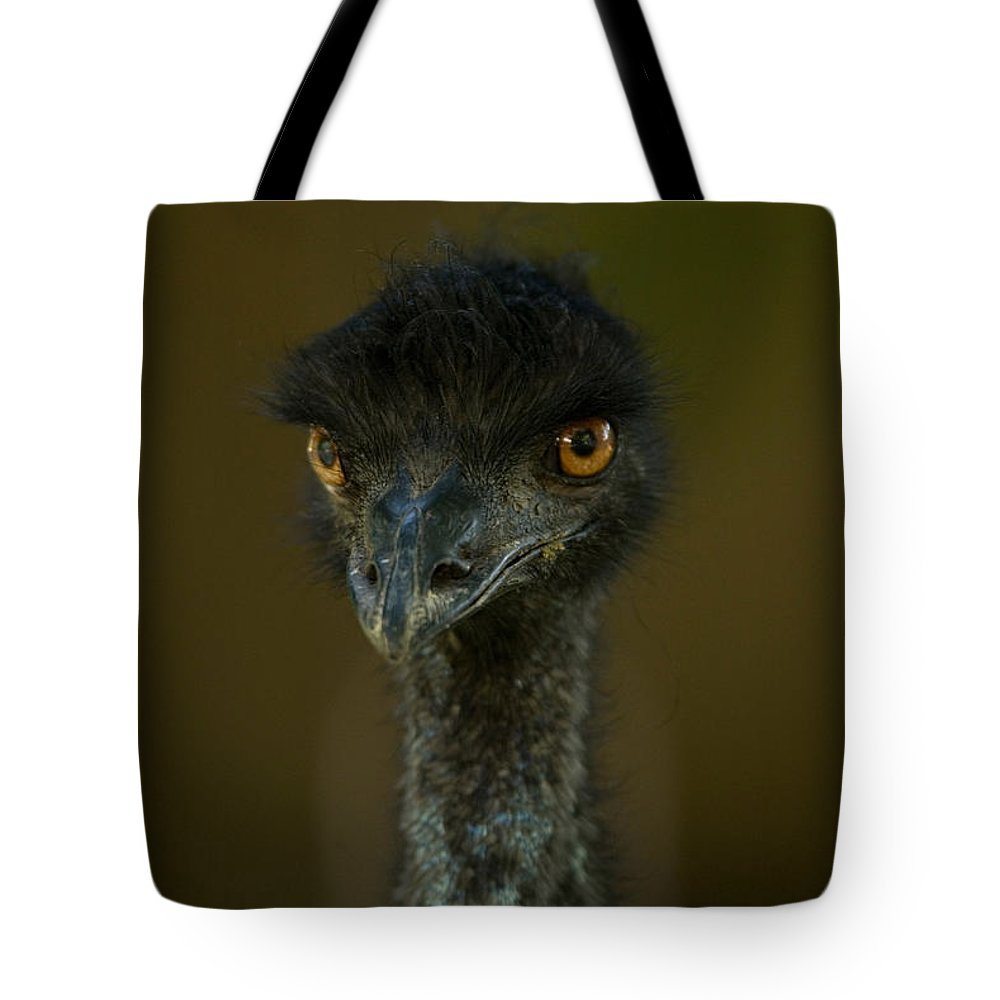Emu Tote Bag featuring the photograph An Emu At The Lincoln Childrens Zoo by Joel Sartore
