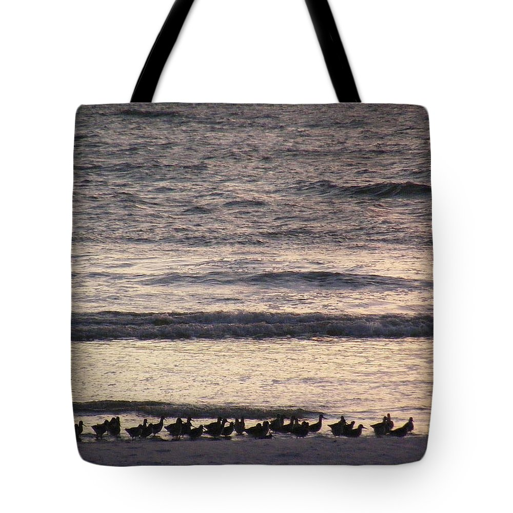 Evening Stroll Tote Bag featuring the photograph An Evening Stroll by Ed Smith