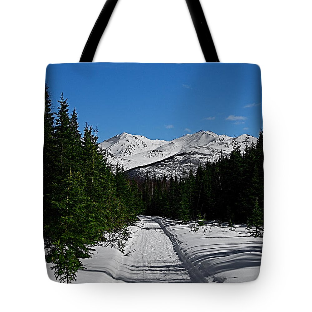 Anchorage Mountains White Trees Tote Bag featuring the photograph Anchorage Mountains by Galeria Trompiz