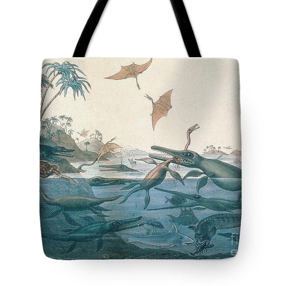 1820 Tote Bags