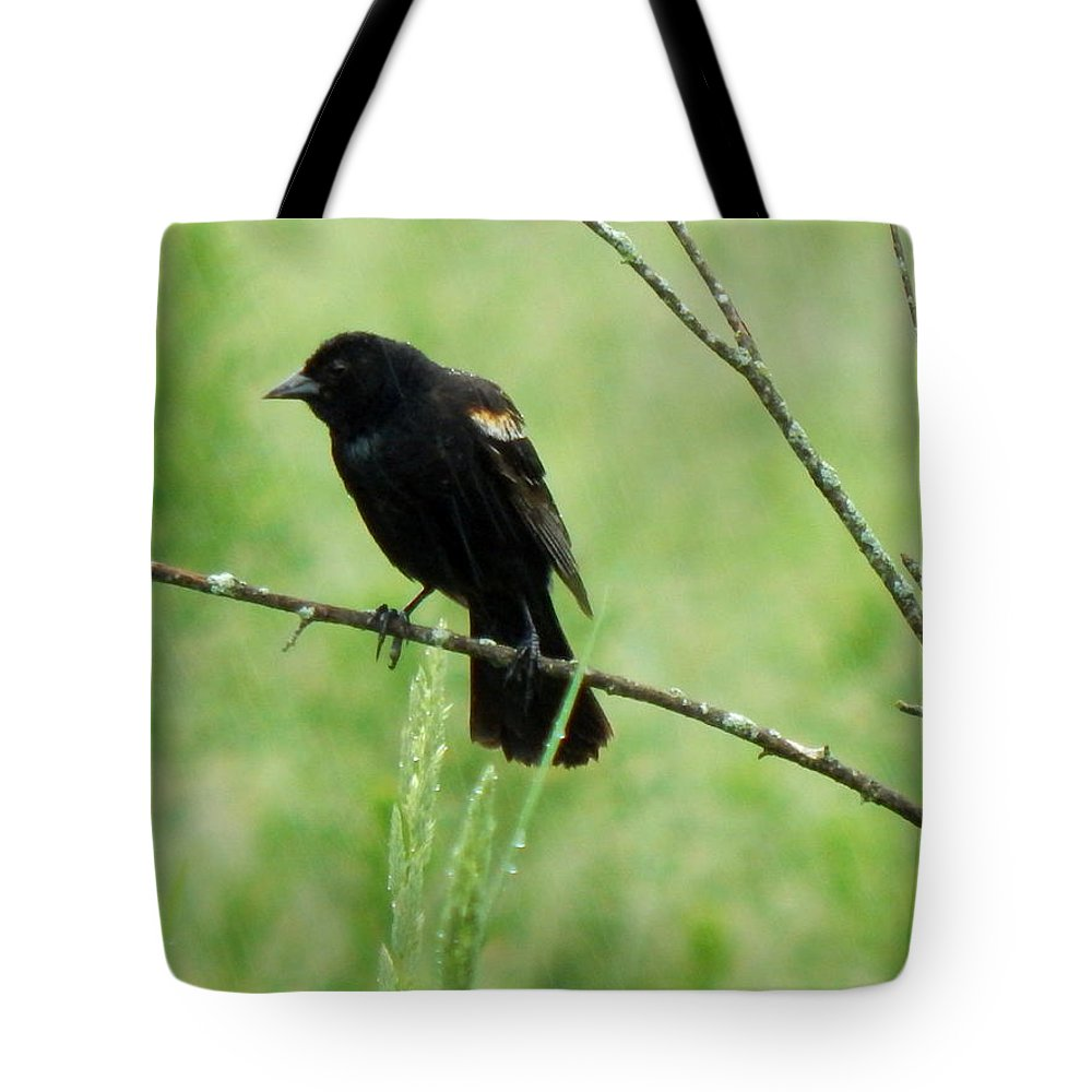 Spring Tote Bag featuring the photograph And Me Without An Umbrella by Wild Thing